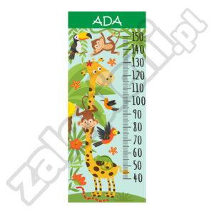 Naklejka miara wzrostu Ada