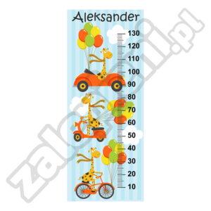 Naklejka miara wzrostu Aleksander