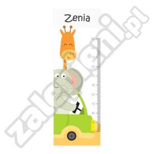 Naklejka miara wzrostu Zenia