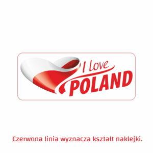 I love Poland 4